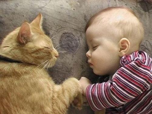 Коте спаси бебе изоставено на улицата в Русия
